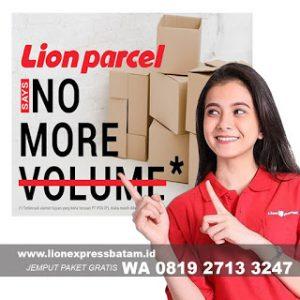 lion parcel batam puri selebriti